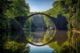Аллергия на сосновую пыльцу симптомы и лечение