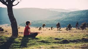 Зверобой полезные и лечебные свойства, применение, противопоказания