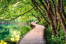Эфирные масла для ванны. рецепты смесей с маслами для ванны — здоровье и долголетие