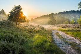Купероз на лице лечение в домашних условиях отзывы