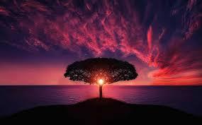 Как лечить запор у взрослых. народные средства для лечения запора