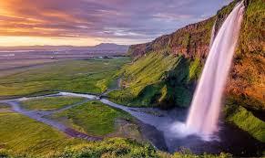Эфирные масла от прыщей — здоровье и долголетие